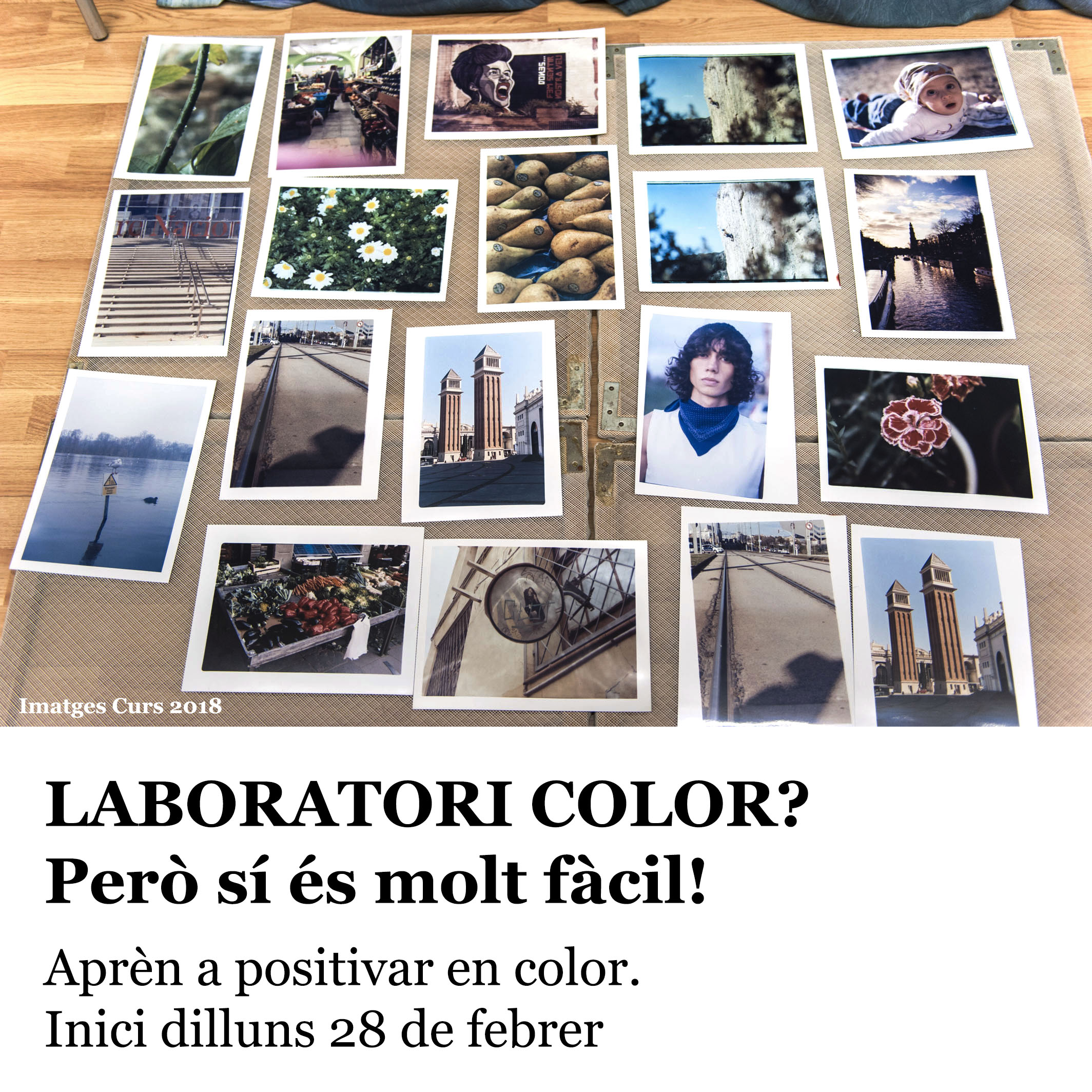 LABORATORI COLOR